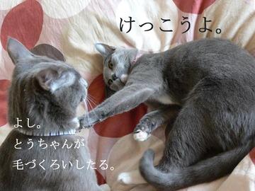 0417oyako1_2