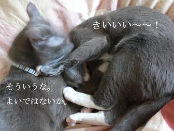 0417oyako3_1