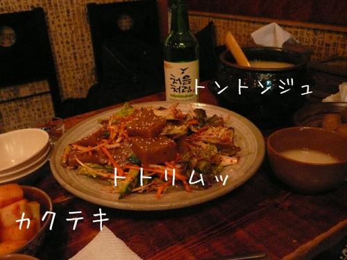20100406totori