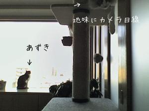 20100510kamera1