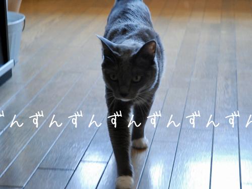 20100531tabi3