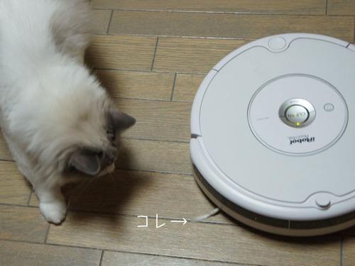 20110804luke5